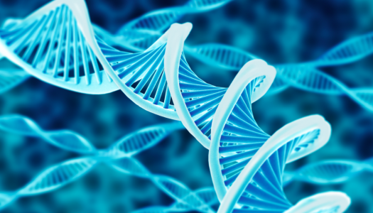 Genetic Engineering and the Future of Humankind