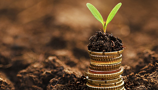 Six Essential Investing Tips for Non-Investors